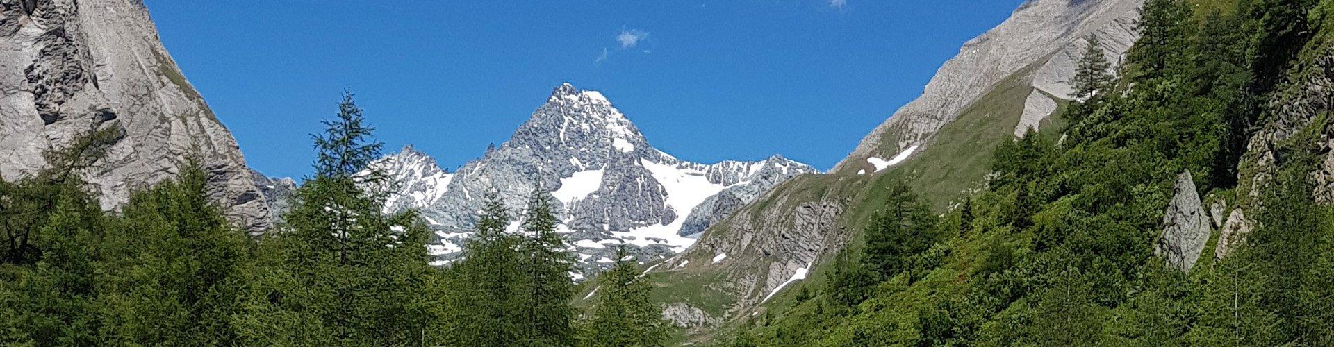 Bergsommer